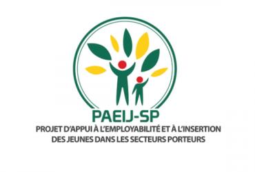 Togo--avis-d'appel-à-manifestation-d'intérêt-pour-le-PAEIJ-SP